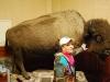 Marianka a bizón, videli sme aj živých