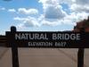 Bryce Canyon 21