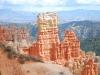 Bryce Canyon 24
