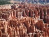 Bryce Canyon 44
