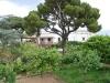 Ostrov Capri 5