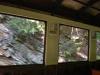 Čiernohronská železnica, skaly za oknom