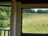 Čiernohronská železnica, krava vegetuje za oknom
