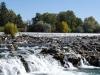 Idaho Falls 6