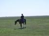 Čikóš na koni v Hortbágy Nemzeti Park, Maďarsko