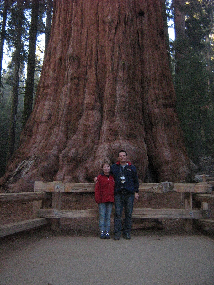 General Sherman Tree, Sequoia National Park, Kalifornia
