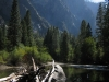 IMKings Cannyon National Park, Kalifornia