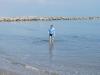 Smelý Zajko v mori, Lido di Venezia, Benátsko