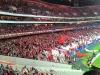 Futbaloví fanúšikovia na Estadio da Luz, Lisabon