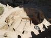 Mesa Verde National Park 24