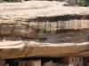 Mesa Verde National Park 32