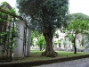 Kláštor Santa Chiara 14