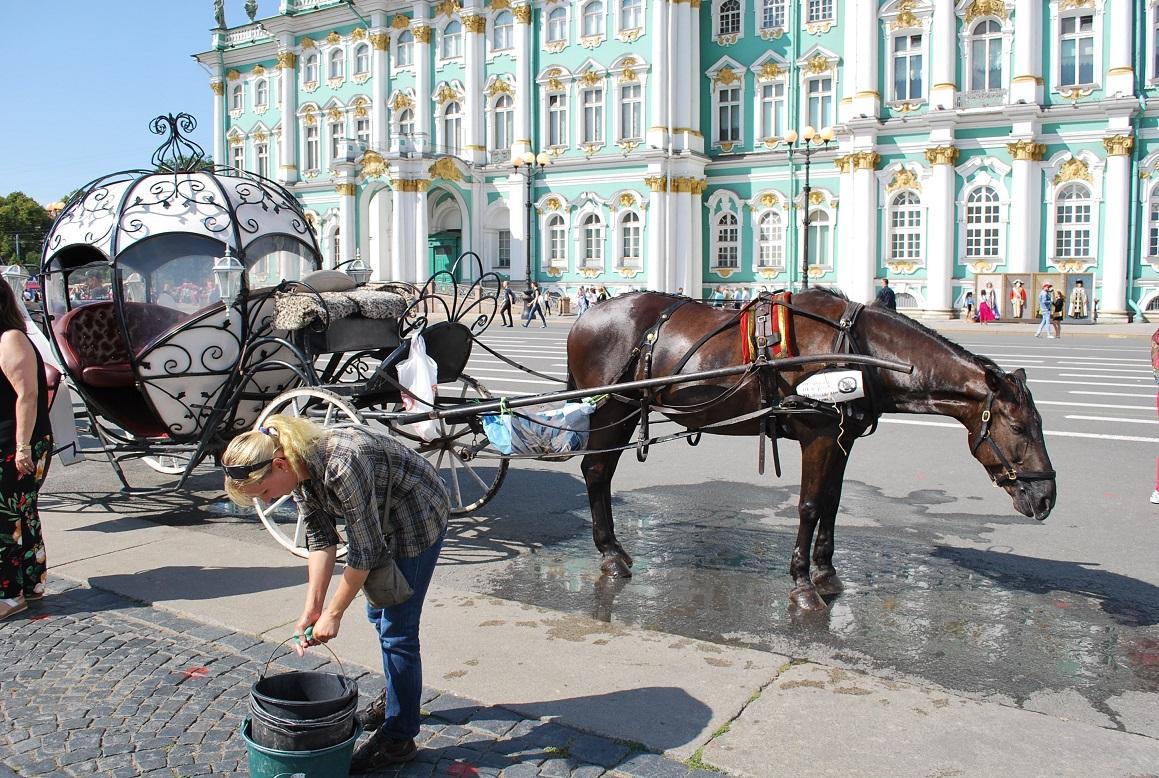 Pred Zimným palácom, Petrohrad, Rusko
