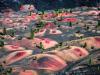 Painted Dunes Lassen Volcanic NP