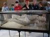 Pompeje - vykopávky 19