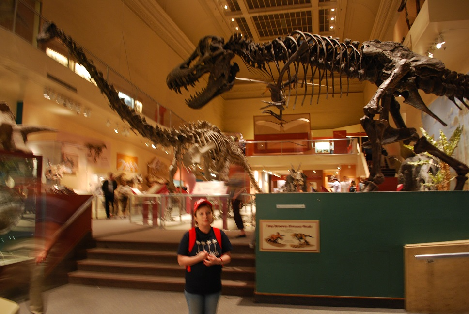 Múzeum histórie prírody, Washington, D.C.