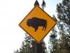 Yellowstone National Park 94