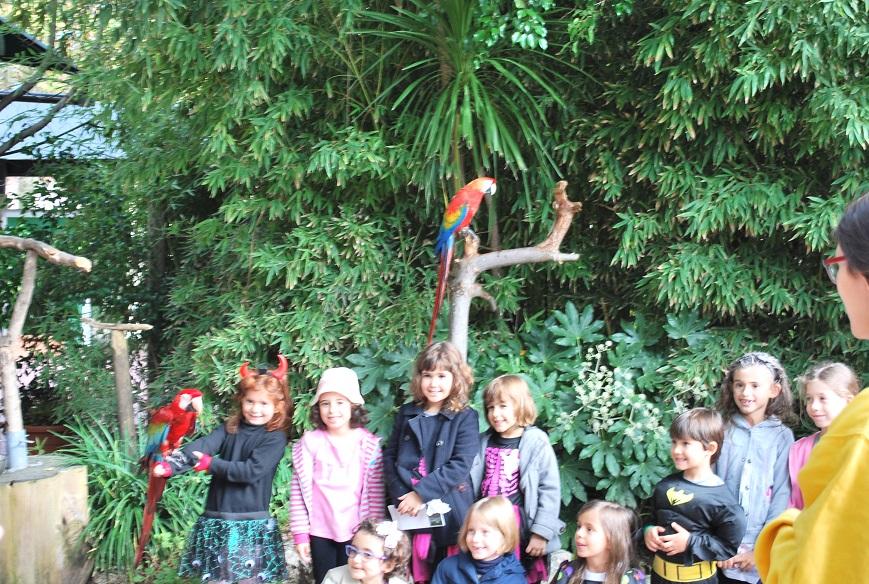 Fotenie detí s papagájmi, ZOO Lisabon, Portugalsko