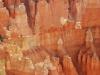 Bryce Canyon 16