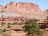 Capitol Reef National Park 35