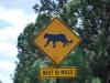 Grand Canyon - South Rim. Pozor na pumy!