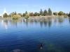 Idaho Falls 9