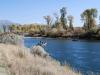 Snake River 1