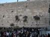Ženy pri Múre nárekov, Židovská štvrť, Jeruzalem