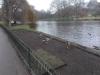 St. James Park, Londýn