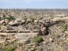 Mesa Verde National Park 15