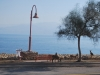 Cesta popri Mŕtvom mori, Ein Gedi, Izrael