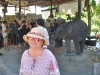 Fotenie s malým slonom, Phuket, Thajsko