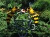 Medová farma, Phuket, Thajsko