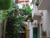 Záhrada v našom hoteli, Letojanni, Sicília