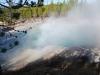 Yellowstone National Park 6