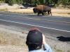 Yellowstone National Park 43