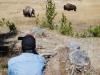Yellowstone National Park 44