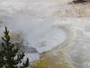 Yellowstone National Park 59