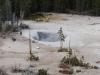 Yellowstone National Park 62