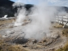 Yellowstone National Park 70