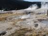 Yellowstone National Park 71