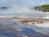 Yellowstone National Park 76