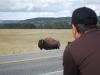 Yellowstone National Park 104