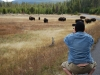 Yellowstone National Park 112